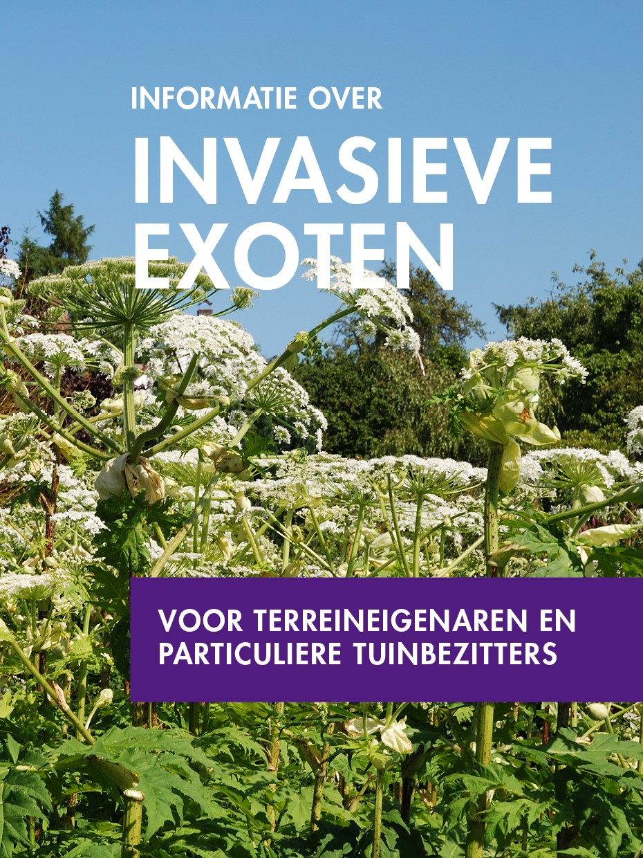 Folder: Informatie over invasieve exoten